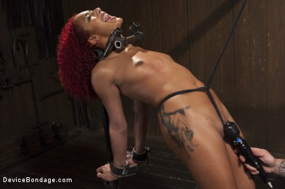 Photo number 5 from 2 Squirting Pain Sluts shot for Device Bondage on Kink.com. Featuring Daisy Ducati and Nikki Darling in hardcore BDSM & Fetish porn.