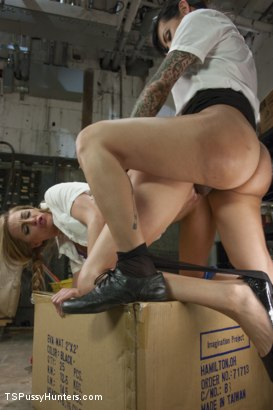 Photo number 9 from Take this Job and SHOVE IT! Two Hot Girls fuck in the storage room! shot for TS Pussy Hunters on Kink.com. Featuring Roxy Rox and TS Foxxy in hardcore BDSM & Fetish porn.