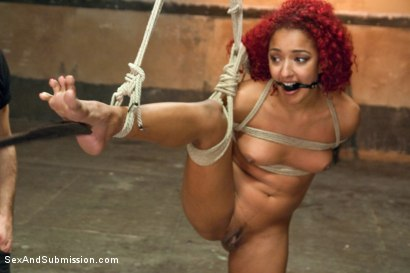 Photo number 8 from The Bondage Fuck Toy: Daisy Ducati shot for Sex And Submission on Kink.com. Featuring Bill Bailey and Daisy Ducati in hardcore BDSM & Fetish porn.