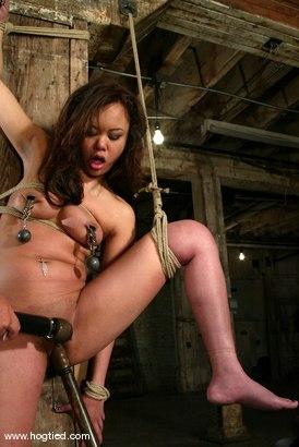 Photo number 11 from Annie Cruz shot for Hogtied on Kink.com. Featuring Annie Cruz in hardcore BDSM & Fetish porn.
