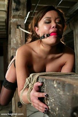 Photo number 6 from Annie Cruz shot for Hogtied on Kink.com. Featuring Annie Cruz in hardcore BDSM & Fetish porn.