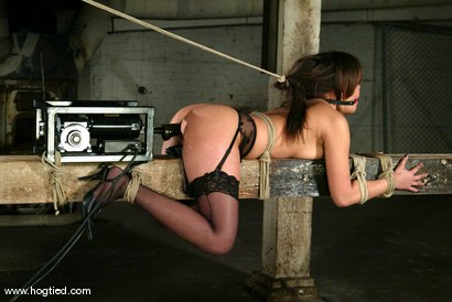 Photo number 4 from Annie Cruz shot for Hogtied on Kink.com. Featuring Annie Cruz in hardcore BDSM & Fetish porn.