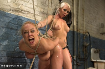 Photo number 7 from Complete Submission of Darling shot for Whipped Ass on Kink.com. Featuring Dee Williams and Lorelei Lee in hardcore BDSM & Fetish porn.