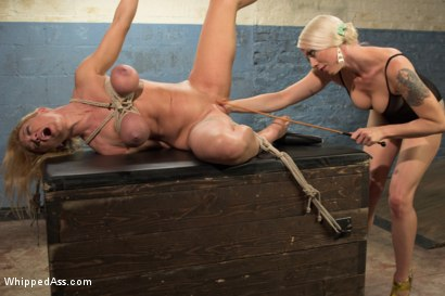 Photo number 12 from Complete Submission of Darling shot for Whipped Ass on Kink.com. Featuring Dee Williams and Lorelei Lee in hardcore BDSM & Fetish porn.