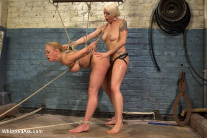Photo number 11 from Complete Submission of Darling shot for Whipped Ass on Kink.com. Featuring Dee Williams and Lorelei Lee in hardcore BDSM & Fetish porn.