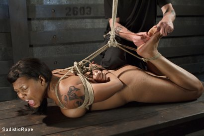 Photo number 4 from Newbie Gets Taken to the Edge! shot for Sadistic Rope on Kink.com. Featuring Lila Jordan in hardcore BDSM & Fetish porn.
