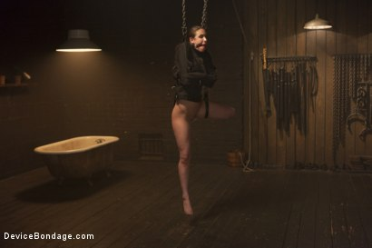 Photo number 9 from Fragile Captive: A Device Bondage Feature shot for Device Bondage on Kink.com. Featuring Casey Calvert in hardcore BDSM & Fetish porn.
