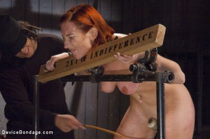 Photo number 11 from 2 x 4 of Indifference shot for Device Bondage on Kink.com. Featuring Sophia Locke and Orlando in hardcore BDSM & Fetish porn.