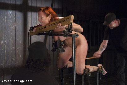 Photo number 12 from 2 x 4 of Indifference shot for Device Bondage on Kink.com. Featuring Sophia Locke and Orlando in hardcore BDSM & Fetish porn.