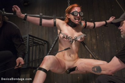 Photo number 2 from 2 x 4 of Indifference shot for Device Bondage on Kink.com. Featuring Sophia Locke and Orlando in hardcore BDSM & Fetish porn.