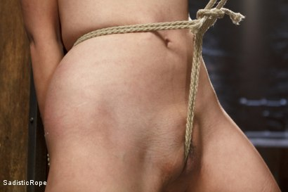 Photo number 9 from Japanese Rope Slut shot for Sadistic Rope on Kink.com. Featuring Marica Hase in hardcore BDSM & Fetish porn.