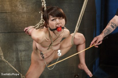 Photo number 4 from Japanese Rope Slut shot for Sadistic Rope on Kink.com. Featuring Marica Hase in hardcore BDSM & Fetish porn.