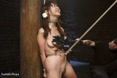 Photo number 12 from Japanese Rope Slut shot for Sadistic Rope on Kink.com. Featuring Marica Hase in hardcore BDSM & Fetish porn.