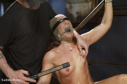Photo number 10 from Big Booty Pain Slut shot for Sadistic Rope on Kink.com. Featuring Savannah Fox in hardcore BDSM & Fetish porn.