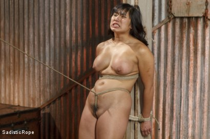 Photo number 12 from Marco Polo - Asian Whore Gets Brutalized shot for Sadistic Rope on Kink.com. Featuring Mia Little in hardcore BDSM & Fetish porn.