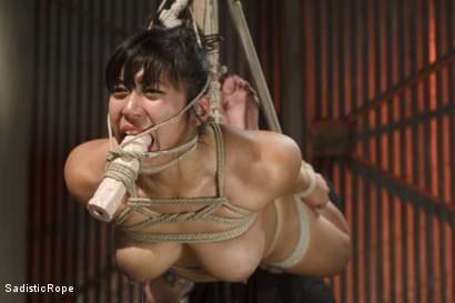 Photo number 3 from Marco Polo - Asian Whore Gets Brutalized shot for Sadistic Rope on Kink.com. Featuring Mia Little in hardcore BDSM & Fetish porn.