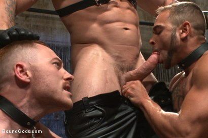 Photo number 3 from Are you a happy cow or a sad cow? - Live Show shot for Bound Gods on Kink.com. Featuring Van Darkholme, Trenton Ducati, Damien Moreau and Brock Avery in hardcore BDSM & Fetish porn.