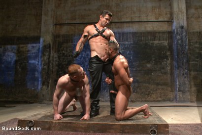 Photo number 4 from Are you a happy cow or a sad cow? - Live Show shot for Bound Gods on Kink.com. Featuring Van Darkholme, Trenton Ducati, Damien Moreau and Brock Avery in hardcore BDSM & Fetish porn.
