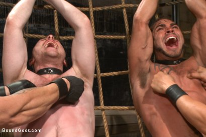 Photo number 9 from Are you a happy cow or a sad cow? - Live Show shot for Bound Gods on Kink.com. Featuring Van Darkholme, Trenton Ducati, Damien Moreau and Brock Avery in hardcore BDSM & Fetish porn.