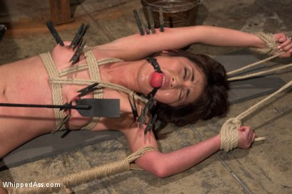 Photo number 10 from  shot for Whipped Ass on Kink.com. Featuring Marica Hase and Cherry Torn in hardcore BDSM & Fetish porn.