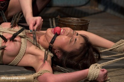 Photo number 12 from  shot for Whipped Ass on Kink.com. Featuring Marica Hase and Cherry Torn in hardcore BDSM & Fetish porn.