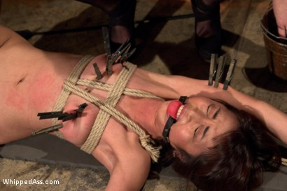 Photo number 14 from  shot for Whipped Ass on Kink.com. Featuring Marica Hase and Cherry Torn in hardcore BDSM & Fetish porn.
