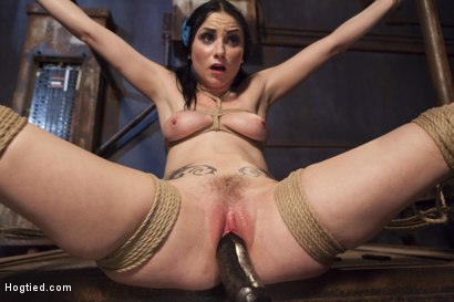 Photo number 8 from Molested Puppet shot for Hogtied on Kink.com. Featuring Veruca James in hardcore BDSM & Fetish porn.