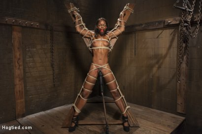 Photo number 1 from Fit and Filthy Anal Slut  shot for Hogtied on Kink.com. Featuring Marie Luv in hardcore BDSM & Fetish porn.