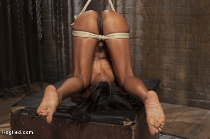 Photo number 8 from Fit and Filthy Anal Slut  shot for Hogtied on Kink.com. Featuring Marie Luv in hardcore BDSM & Fetish porn.