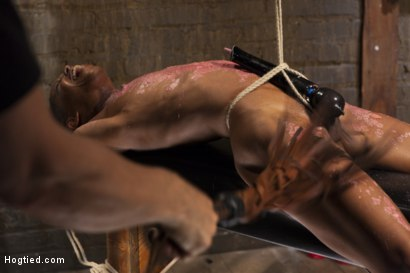 Photo number 7 from Fit and Filthy Anal Slut  shot for Hogtied on Kink.com. Featuring Marie Luv in hardcore BDSM & Fetish porn.