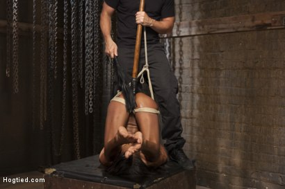 Photo number 9 from Fit and Filthy Anal Slut  shot for Hogtied on Kink.com. Featuring Marie Luv in hardcore BDSM & Fetish porn.