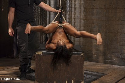 Photo number 12 from Fit and Filthy Anal Slut  shot for Hogtied on Kink.com. Featuring Marie Luv in hardcore BDSM & Fetish porn.