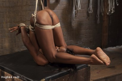 Photo number 14 from Fit and Filthy Anal Slut  shot for Hogtied on Kink.com. Featuring Marie Luv in hardcore BDSM & Fetish porn.