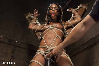 Photo number 3 from Fit and Filthy Anal Slut  shot for Hogtied on Kink.com. Featuring Marie Luv in hardcore BDSM & Fetish porn.