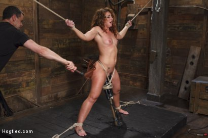 Photo number 10 from Insatiable Fuck Slut Gets the Hydra Vibe shot for Hogtied on Kink.com. Featuring Savannah Fox in hardcore BDSM & Fetish porn.