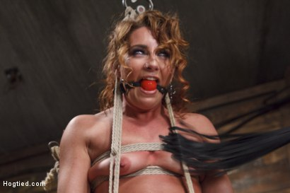 Photo number 3 from Insatiable Fuck Slut Gets the Hydra Vibe shot for Hogtied on Kink.com. Featuring Savannah Fox in hardcore BDSM & Fetish porn.