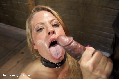 Photo number 11 from Special Feature: Anal MILF Training Compilation shot for The Training Of O on Kink.com. Featuring Simone Sonay, Mr. Pete, Veronica Avluv, Mickey Mod, Holly Heart and Owen Gray in hardcore BDSM & Fetish porn.