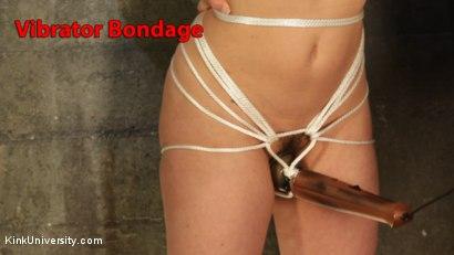 Vibrator Bondage for Hands-Free Orgasm Control