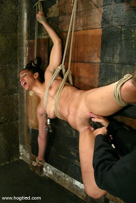 Photo number 5 from Isis Love shot for Hogtied on Kink.com. Featuring Isis Love in hardcore BDSM & Fetish porn.