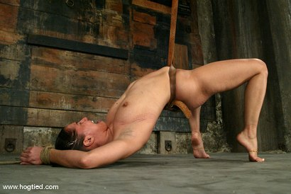Photo number 9 from Isis Love shot for Hogtied on Kink.com. Featuring Isis Love in hardcore BDSM & Fetish porn.