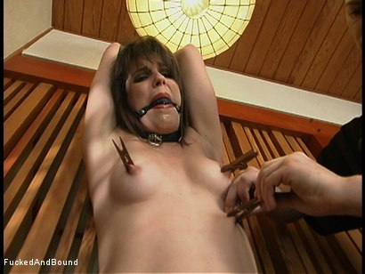 Photo number 4 from A Crab Tie And A Big Cock shot for Brutal Sessions on Kink.com. Featuring Bobbi Starr and Chris Cannon in hardcore BDSM & Fetish porn.