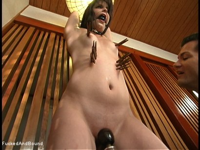 Photo number 5 from A Crab Tie And A Big Cock shot for  on Kink.com. Featuring Bobbi Starr and Chris Cannon in hardcore BDSM & Fetish porn.