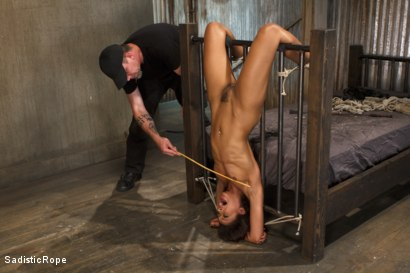 Photo number 9 from Penthouse Pet, Skin Diamond, is Devastated in Brutal Bondage  shot for Sadistic Rope on Kink.com. Featuring Skin Diamond in hardcore BDSM & Fetish porn.