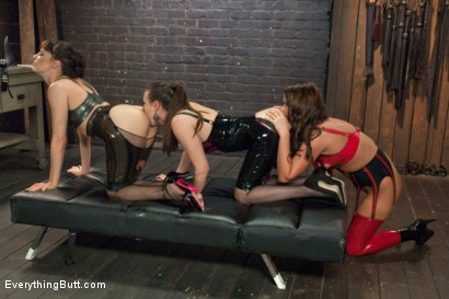 Photo number 3 from EPIC ANAL!!!  A Journey into the Extreme shot for Everything Butt on Kink.com. Featuring Roxy Raye, Dana DeArmond and Casey Calvert in hardcore BDSM & Fetish porn.