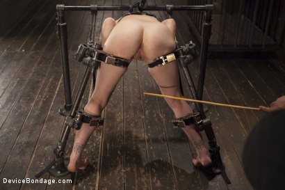 Photo number 9 from Chair of Doom shot for Device Bondage on Kink.com. Featuring Juliette March in hardcore BDSM & Fetish porn.