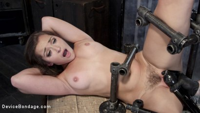 Photo number 4 from Dani Daniels - Closet Pain Slut shot for Device Bondage on Kink.com. Featuring Dani Daniels in hardcore BDSM & Fetish porn.