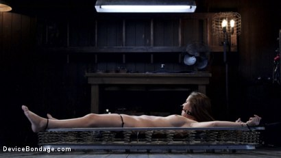 Photo number 5 from Dani Daniels - Closet Pain Slut shot for Device Bondage on Kink.com. Featuring Dani Daniels in hardcore BDSM & Fetish porn.