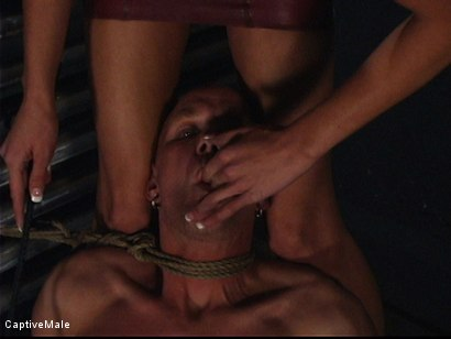 Photo number 1 from Miss Audrey's Slaves shot for Captive Male on Kink.com. Featuring Audrey Leigh, Chad Rock and Sarah Jane Ceylon in hardcore BDSM & Fetish porn.