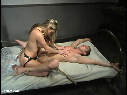 Photo number 14 from Shocking Discipline shot for Captive Male on Kink.com. Featuring Harmony and Danny Wylde in hardcore BDSM & Fetish porn.