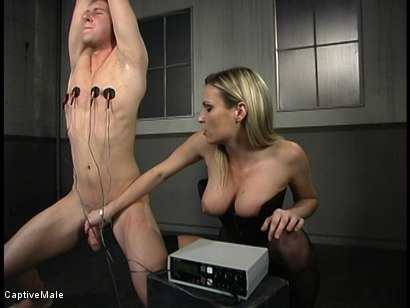 Photo number 4 from Shocking Discipline shot for Captive Male on Kink.com. Featuring Harmony and Danny Wylde in hardcore BDSM & Fetish porn.